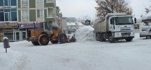 Malazgirt'te kar yağışı ve tipi