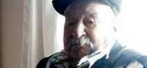 Aydın'ın tanıtım yüzü olan asırlık çınar hayatını kaybetti