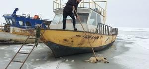 Suya düşen köpek donarak öldü