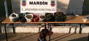 Mardin'deki uyuşturucu operasyonunda bir kişi tutuklandı