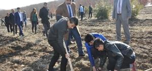 Gölbaşı Metem Hatıra Ormanına 2 bin fidan dikildi