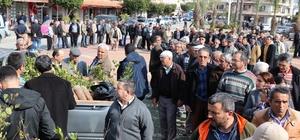 Gazipaşa'da 6 bin 900 fidan dağıtıldı
