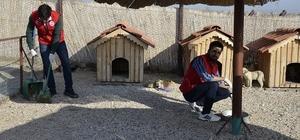 Gençlik Merkezleri Hayvan Barınağını ziyaret etti