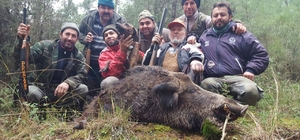 Marmaris'te domuz sürek avı başlatıldı