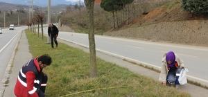 Akçakoca Belediyesi ağaçlandırmaya önem veriyor