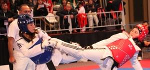 Uluslararası 4. Türkiye Açık Tekvando Turnuvası