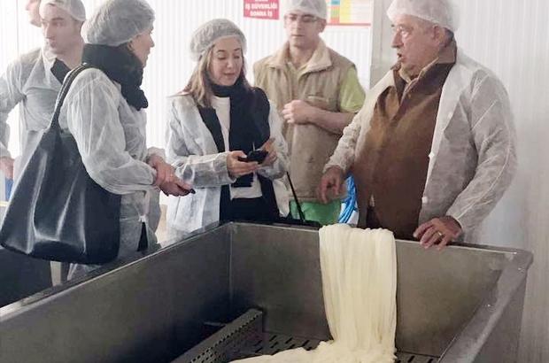 Edirne'de beyaz peynirin yol haritası çıkarılıyor