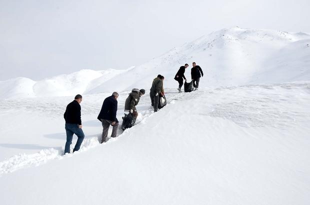 2 metre karda yürüyerek yaban hayvanlarına yem bıraktılar
