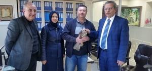 Yaralı şahine AK Parti'li başkan sahip çıktı
