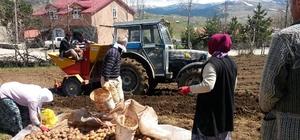 Ordu'da işgücü tarıma eğilimli
