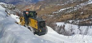 Artvin'de karla mücadele çalışmaları devam ediyor