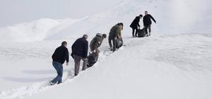Bitlis'te yaban hayvanlarına yem desteği