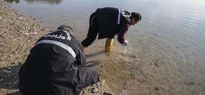 Seyhan Baraj Gölü'nde 207 mermi bulundu