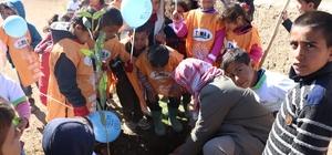 TEMA Vakfı okulları yeşillendiriyor