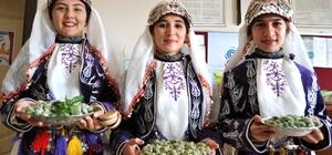 Silifke'de 2. Çağla ve Kültür Şenlikleri düzenlenecek