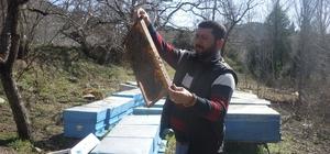 """Yayladağı'nda arıcılık yapan Suriyeli Muhammed'den gençlere """"Bal gibi iş"""" tavsiyesi"""