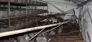 Mantar üretim tesisinde tablalar devrildi: 1 ölü, 1 yaralı