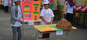 Tübitak 4006 Bilim Fuarlarında okullardan bu yıl da büyük başarı