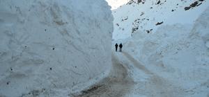 Hakkari'de karla zorlu mücadele