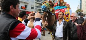 Deve güreşlerinin tanıtımı için deve ve atlarla şehir turu