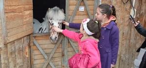 Süleymanpaşa Belediyesi Çocuk Kulübü'nden üyelerine binicilik eğitimi