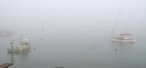 Düzce ve Sakarya'da yoğun sis