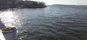 Gölyazı yaz sezonuna hazırlanıyor