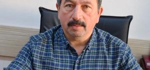 Fatsa'da muhtarlık seçimi heyecanı