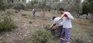Döşemealtı Belediyesi'nden Okul bahçelerinde bahar temizliği