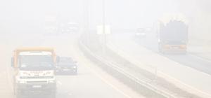 Sakarya, Düzce ve Kocaeli'de yoğun sis