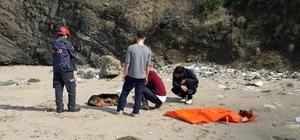 Bartın'da köpek kurtarma operasyonu