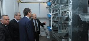 Vali Çelik, Damızlık Tavuk Islahı Enstitüsü Üretim İstasyonunda inceleme yaptı