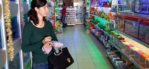 Iğdır'da petshoplara idari para cezası uygulandı