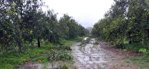 Muğla'da fırtına ve yağış hayatı olumsuz etkiledi