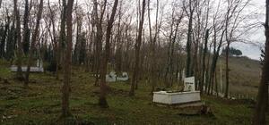 Ordu'da yeni mezarlık alanları belirlendi