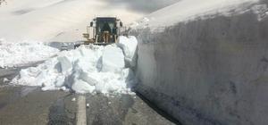 Van'da 14 mahalle yolu kapalı