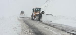 Van'da 96 mahalle yolu kapalı