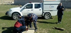 Konya'da köpek kurtarma operasyonu