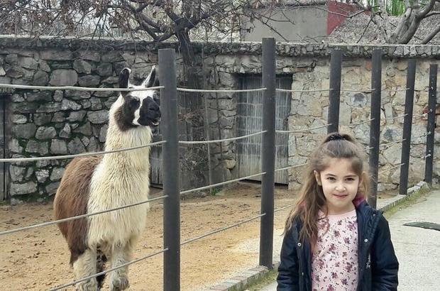 Darıca Hayvanat Bahçesi Abhaz çocukları ağırladı