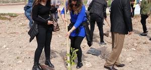 Toros Üniversitesi öğrencilerinden Toroslar'a hatıra ormanı