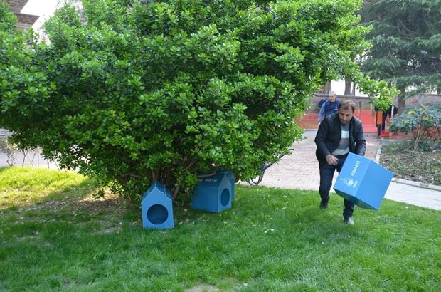 Şehzadeler'den sokak hayvanları için yeni proje