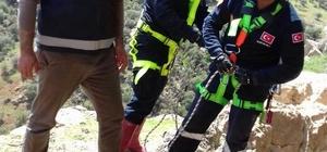Uçurumda mahsur kalan 2 keçi itfaiye tarafından kurtarıldı