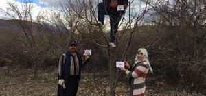 AK Parti kadın kolları 'Evet' için yollarda