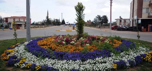 Kepez Belediyesi ilçeyi çiçeklerle donattı