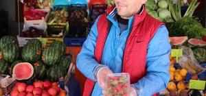 Kilosu 15 liradan satılan çilek el yakmaya devam ediyor