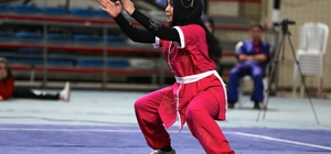 Geleneksel Wushu Türkiye Şampiyonası