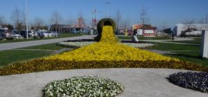 Bahar geldi park ve bahçeler doldu