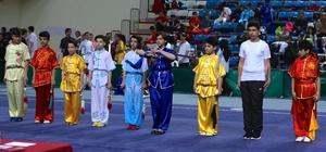 Türkiye Geleneksel Wushu Şampiyonası
