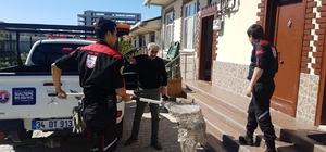 Mahsur kalan martıyı belediye ekipleri kurtardı