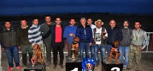 Manavgat'ta av köpekleri kıyasıya yarıştı